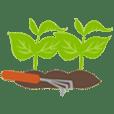 2019, rgv, rgv new homes guide, mcallen, edinburg, mission, texas, real estate, landscaping